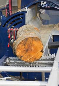 log in sawmill