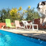4 Reasons Why Fall Is a Great Time of Year to Install a Pool